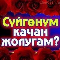 СУТОЧНЫЙ КВАРТИРА   89651637874