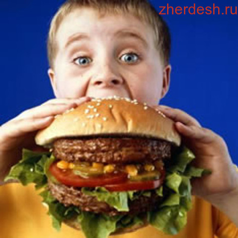 fast food and childhood obesity essay