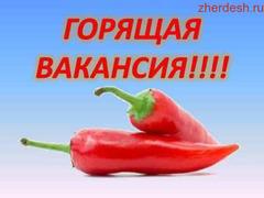 Кассир, повар БЕЗ ОПЫТА