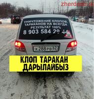 КЛОП ТАРАКАН ЖОК КЫЛАБЫЗ ГАРАНТИЯ 6-АЙ