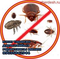 Уничтожение клопов тараканов на всегда ГАРАНТИЯ КАЧЕСТВА СЕРТИФИКАТ ДОГОВОР БАР