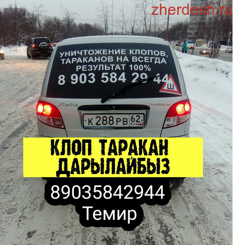 КЛОП ТАРАКАН ДАРЫЛАЙБЫЗ ГАРАНТИЯСЫ 6-ай