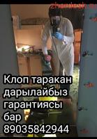 КЛОП ТАРАКАН ДАРЫЛАЙБЫЗ ГАРАНТИЯСЫ 6-ай сертификат договор бар