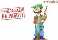 ДВОРНИК