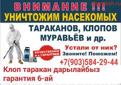 Клоп таракан дарылайбыз ГАРАНТИЯСЫ 6-АЙ СЕРТИФИКАТАРЫ договор бары бар