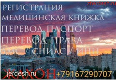 Регистрация/водительские права/мед книжка/права паспорт перевод/продление/справка