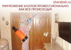Дезинфекция_Клопов и Тараканов