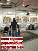 Клоп таракан дарылайбыз сертификат договор бары официально