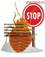Уничтожение клопов тараканов гарантия 6 месяцев