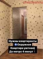 Нужны квартиранты)