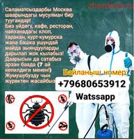 Дезинфекция (Очистка квартир от Клопов и Тараканов.