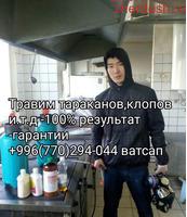 ХЛОП ТАРКАН ДАРЫЛАЙБЫЗ ГАРАНТИЯ 6-АЙ