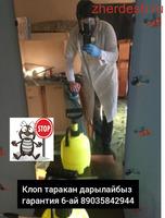 КЛОП ТАРАКАН ДАРЫЛАЙБЫЗ ГАРНИТИЯ 6-АЙ СЕРТИФИКАТ ДОГОВОР БАРЫ БАР