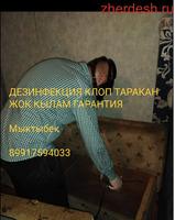 ДЕЗИНФЕКЦИЯ ДЕЗИНФЕКЦИЯ КЛОП ТАРАКАН ЖОК КЫЛАМ ГАРАНТИЯ МЕНЕН